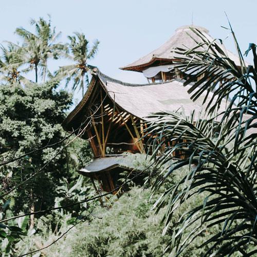 StudyInBali Greenvillage 04 web 2 - Tourism Destination Management
